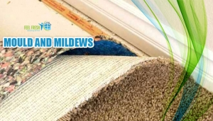 mould and mildews
