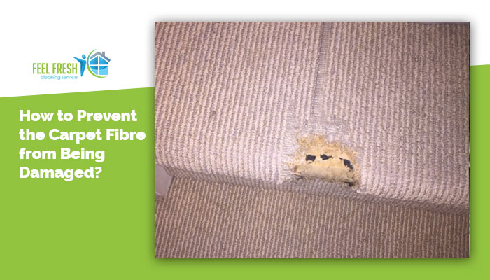 carpet fibre