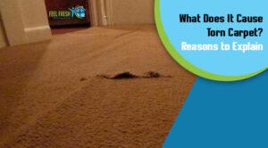 cause torn carpet