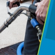 Polyester Carpet Cleaning